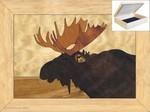 marqart box moose