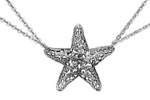 silverspoon-Starfish