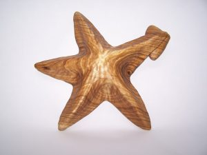 Starfish with Dinner