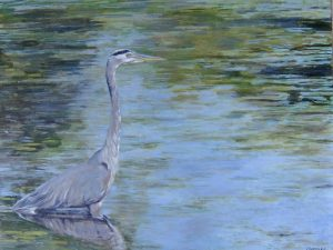 Artist Colette Fairman Heron Oil Painting