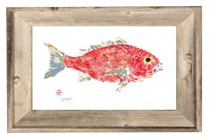 Artist John Doherty red_snapper_in_driftwood_frame2