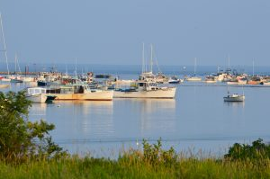 Cape Porpoise Harbor