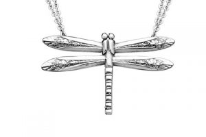 silverspoon-ND_Dragonfly_large